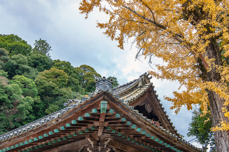 Autumn scenery of the Kotohiragu Shrine