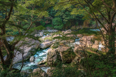 Mountain stream of the Sandankyo Gorge in Hiroshima, Japan