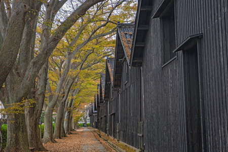 Autumn scenery of the Sankyo warehouse in Sakata city