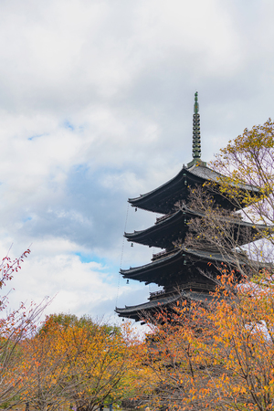 Autumn scenery of the Toji temple in Kyoto Editöryel
