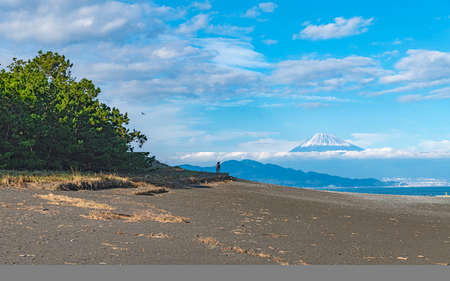 Landscape of Mount Fuji from the pinery of Miho in Shizuoka, Japan