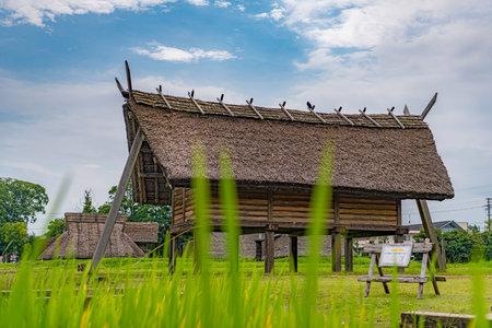 Shrine of Toro archaeological site