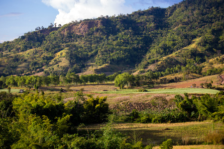 landscape road: Wonderfull top hill lanscape in Thailand