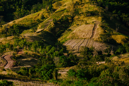 Wonderfull top hill lanscape in Thailand