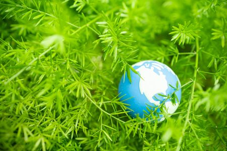 Global Warming, Environment and Ecology Concept. Close up of mini world ball on green leaf tree nature with rain drop.