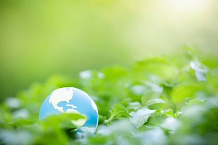 Close up of mini world ball with nature green leaf on blurred greenery background under sunlight with bokeh and copy space using as background natural plants landscape, ecology wallpaper concept.