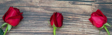 Closeup of three beauty red roses flower on wooden plank. Using as flora nature and love, Valentine's day cover page Concept