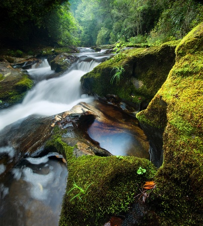 A small intimate waterfall on the wild and scenic Chattooga River in Western North Carolina, in the dense, lush Nantahala National Forest Stock Photo - 11613629
