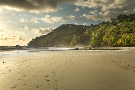 A jungle rain forest beach in Costa Rica at sunset, in Manuel Antonio National Park