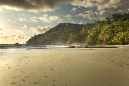 costa rica: A jungle rain forest beach in Costa Rica at sunset, in Manuel Antonio National Park