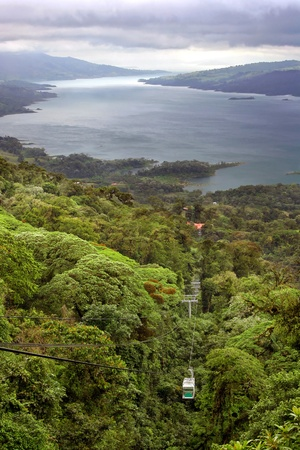 tree canopy: A tram tour through the lush tropical rain forest canopy, high above Lake Arenal in Costa Rica