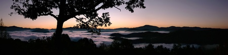 blue ridge mountains: Panorama of a fog filled valley at dawn in the Smoky Mountains of North Carolina