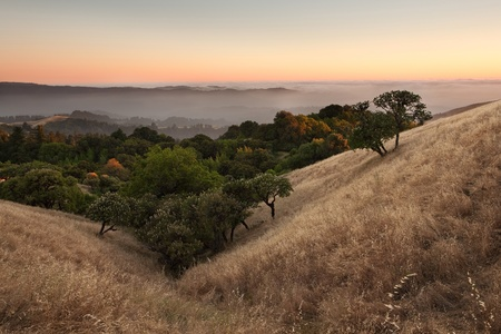 A beautiful sunset over a typical hilly California grassland in summer
