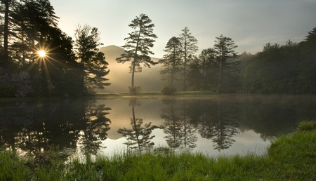 A foggy sunrise in a lush North Carolina forest, on a golf course photo