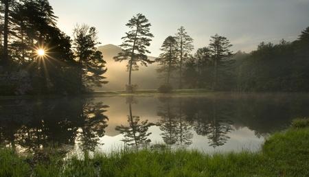 Een mistige zonsopgang in een weelderige North Carolina bos, op een golfbaan Stockfoto