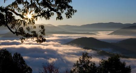 smokies: Amanecer con niebla en las Grandes Monta�as Humeantes