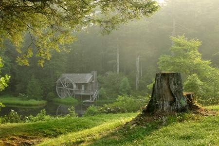 molino de agua: Hermoso edificio antiguo molino de agua en el frondoso bosque en la mañana de rocío