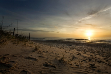 Beautiful empty beach at sunset with dune vegetation and wooden fence photo