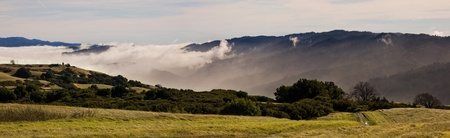 foggy hill: Fog rolling into California Mountains, near the Bay Area