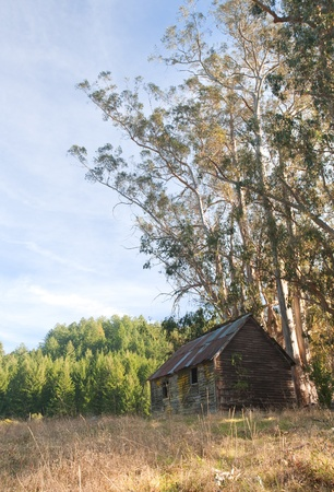 Old Abandoned Cabin in a Tranquil Countryside Setting photo