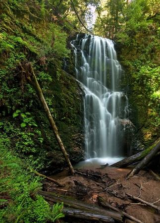 basin mountain: Berry Creek Falls in the Coastal Redwood forest in Big Basin, California