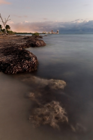 Beautiful sunrise over Miami Beach skyline and wild portion of Key Biscayne photo
