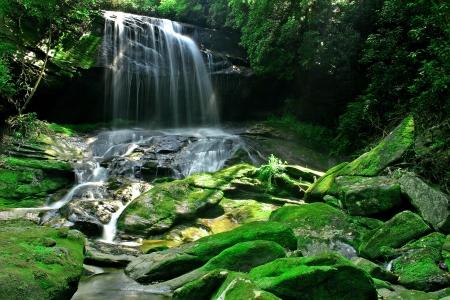 Een verborgen waterval in een dicht regenwoud, met mist wordt verlicht door zonlicht en bemoste rotsen op de voorgrond Stockfoto