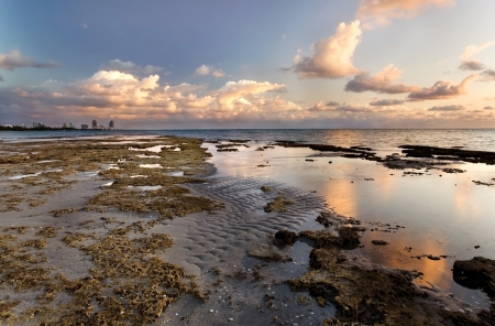 Miami Beach, as seen from Bear Cut Nature Preserve, during sunrise photo
