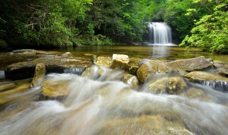 A small waterfall flows through a dense temperate rain forest in western North Carolina Stock Photo