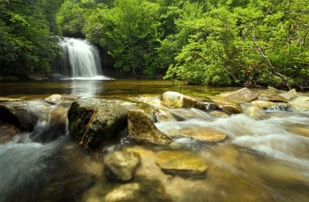 Beautiful waterfall in lush rain forest