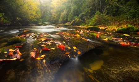 The Chattooga River winds through Western North Carolina photo