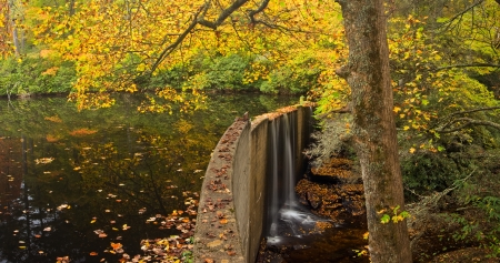 A small lake in the Appalachian Mountains of North Carolina with manmade dam, in autumn photo