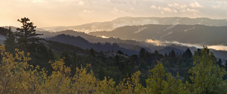 bay area: Beautiful Santa Cruz Mountains of Californias Bay Area, covered in mist and fog at sunrise