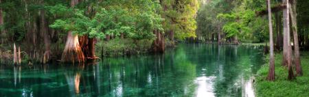 日の出 Ichetucknee のばね、フロリダ州の美しい湧き水の川のパノラマ 写真素材