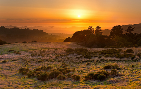 chaparral: The golden California sun sets over a chaparral meadow, the Santa Cruz Mountains, and the Pacific Ocean in the distance Stock Photo