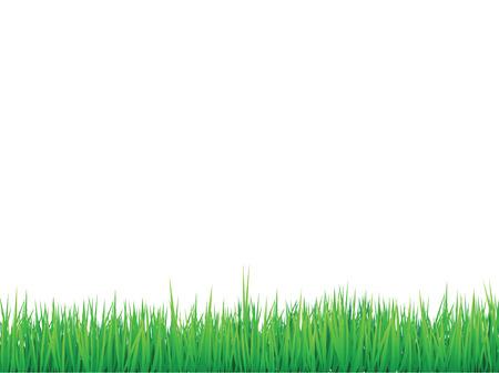 erba sfondo bordi, possono essere organizzati per effetto senza saldatura Vettoriali