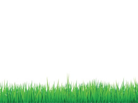 grass borders background,  can be arranged for seamless effect Vector