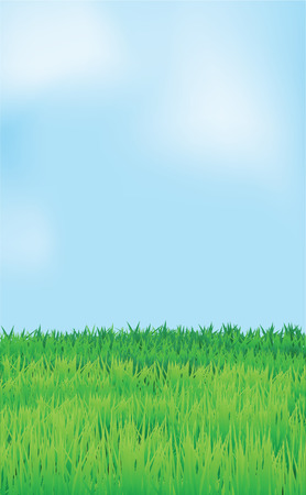 landscape, blue sky and green field. Stock Vector - 7504102