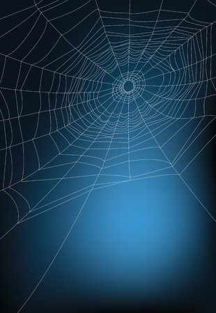 spider web illustration, for background. Stock Vector - 8006037
