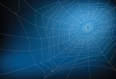 spider web illustration, for background. Stock Vector - 8006040
