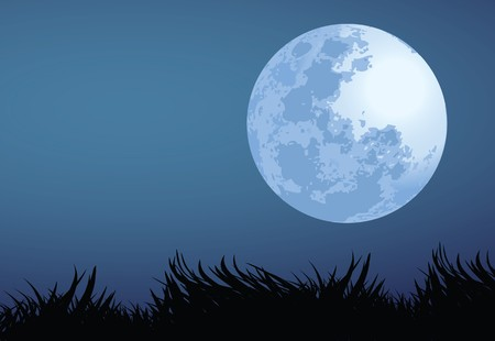 moon night: illustration of full moon night. Illustration