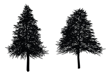 illustrations of christmas trees, fir tree. leaves can be re-arranged. Illustration
