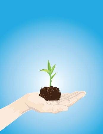 germination: an illustration of a hand holding a seedling. Illustration