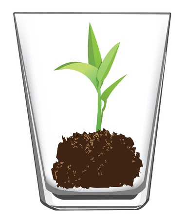 seedling in a glass, vector format is available.