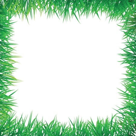 grass decorative border, for green and natural concept. Vector