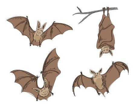 cartoon bats, in pencil drawing style. Vector