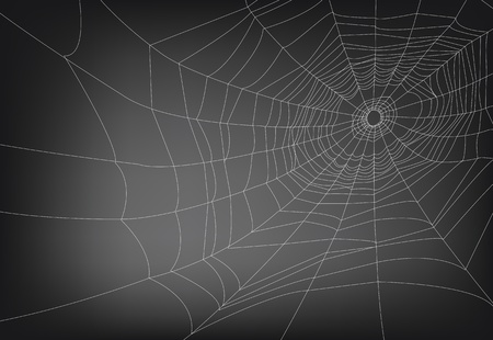 een vector illustraties van spinnenweb, met kopie ruimte. lijnen zijn uitgebreid, zodat de dikte kan gemakkelijk worden aangepast. Stock Illustratie