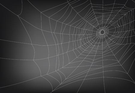 tan: un ilustraciones vectoriales de tela de ara�a, con espacio de copia. las l�neas no se expanden por lo que f�cilmente se puede ajustar el grosor. Vectores