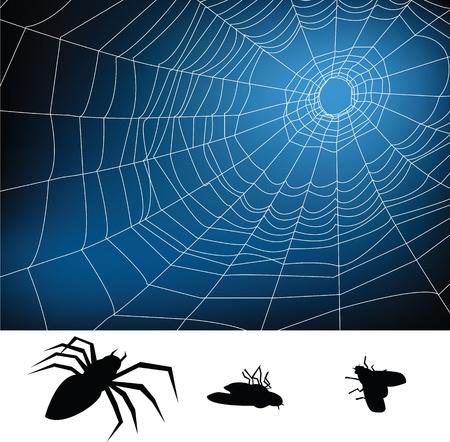spider web illustration, for background. Stock Vector - 10599210