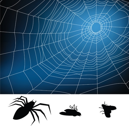spider web illustration, for background. Stock Vector - 10599210